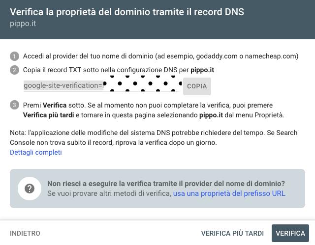 verifica sito dns